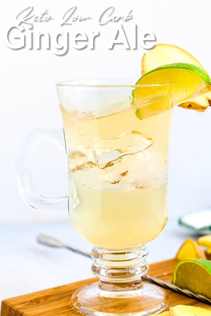 Homemade Keto Ginger Ale LowCarbingAsian Pin 1