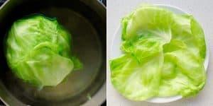 Cream Cheese Dumplings Recipe (52)