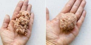Demi-Glace Meatballs Recipe (47)