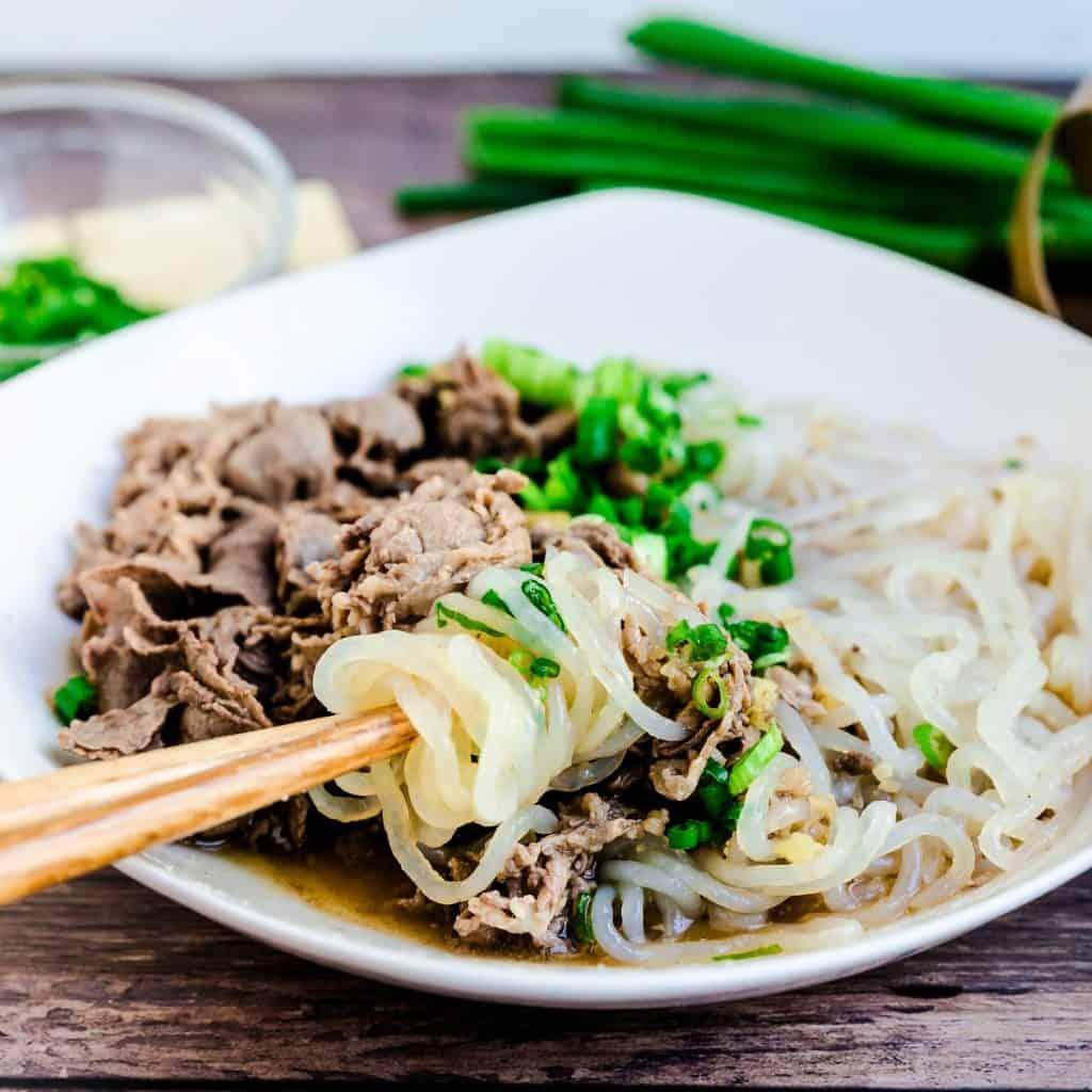 Japanese Beef Shirataki Noodle Soup LowCarbingAsian Pic 2