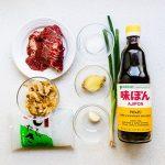 Japanese Beef Shirataki Noodle Soup Recipe (1)