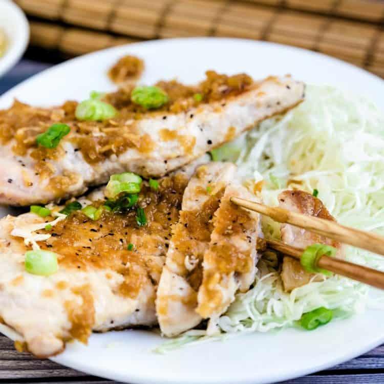 Japanese Pork Ginger LowCarbingAsian Cover 2