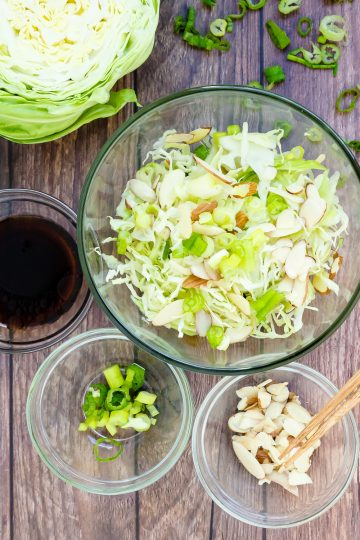 Japanese Cabbage Salad LowCarbingAsian Cover