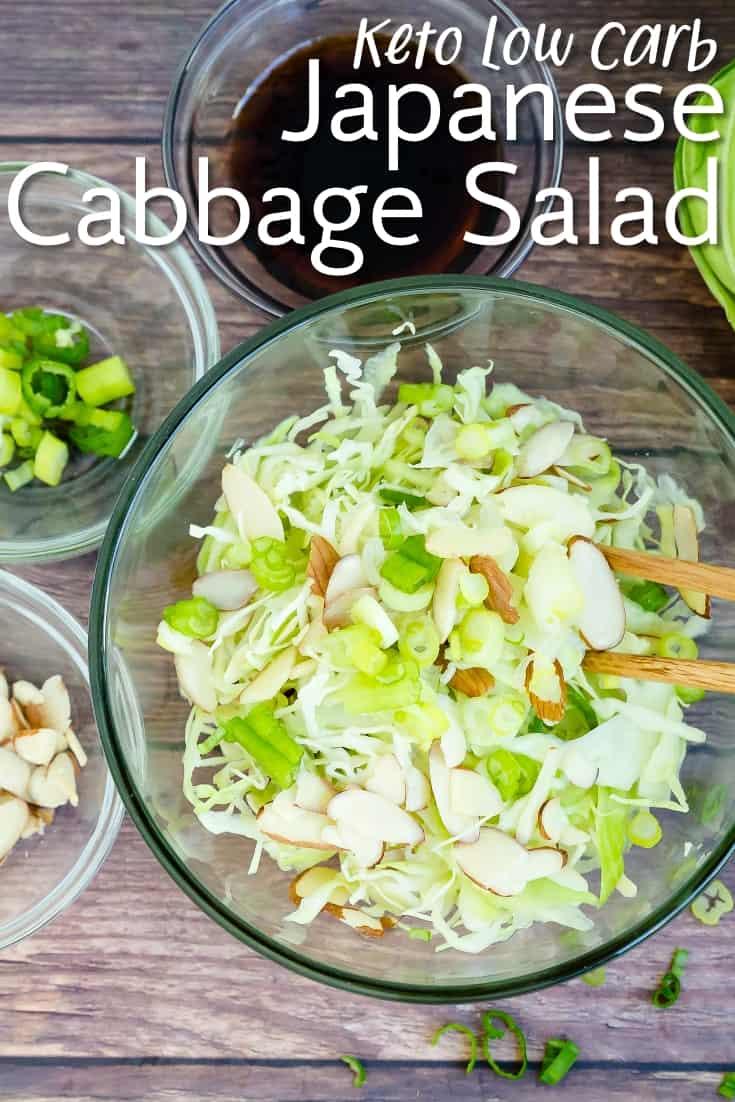 Japanese Cabbage Salad LowCarbingAsian Pin 2
