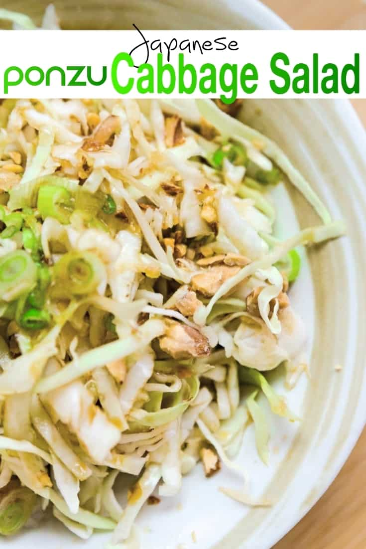 Japanese Cabbage Salad Pin 1