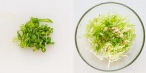 Japanese Cabbage Salad Recipe (11)