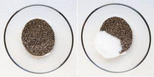 Chocolate Coconut Chia Pudding Recipe (20)