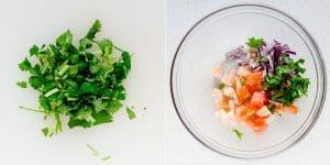 Homemade Shrimp Ceviche Recipe (33)