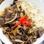 Japanese Gyudon Beef Bowl Recipe (12)
