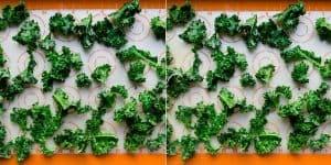 Salt n' Onion Garlic Kale Chips Recipe (22)