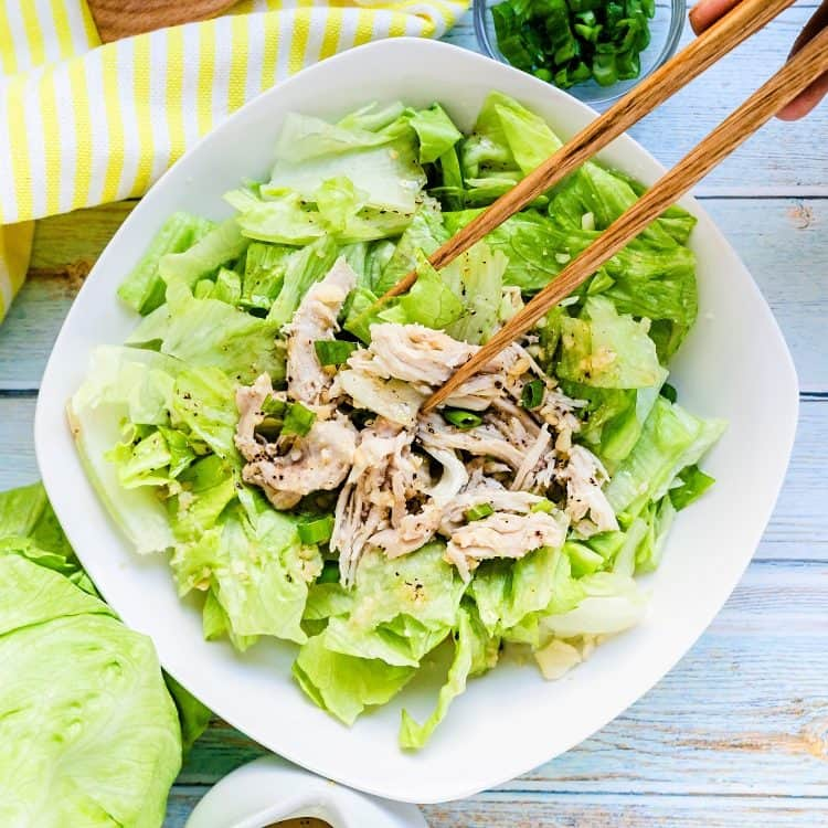 Chinese Chicken Salad LowCarbingAsian Cover