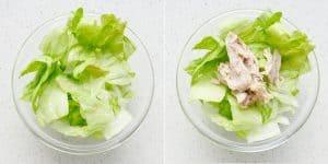 Chinese Chicken Salad Recipe (35)