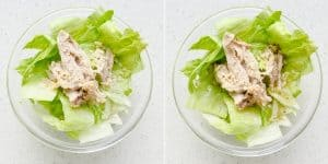 Chinese Chicken Salad Recipe (36)