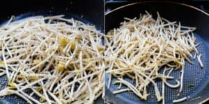 Bean Sprouts Stir Fry Recipe (13)