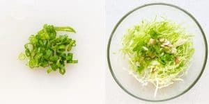 Mom's Japanese Cabbage Salad Recipe (3)