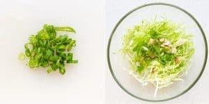 Mom's Japanese Cabbage Salad Recipe (3)
