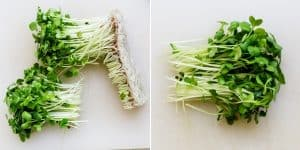 Keto Prosciutto Radish Sprouts Wraps with Japanese Garlic Mayo Recipe (23)