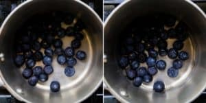Low Carb Blueberry Sauce Recipe (10)