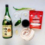 Keto Chashu Pork Belly Recipe (100)