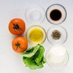 Tomato Basil Mozzarella Bites Recipe (40)