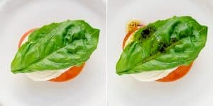 Tomato Basil Mozzarella Bites Recipe (64)