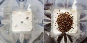Keto Starbucks Copycat Mocha Frappuccino Recipe (9)