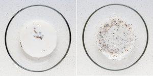Churro Chia Seed Pudding Recipe (21)