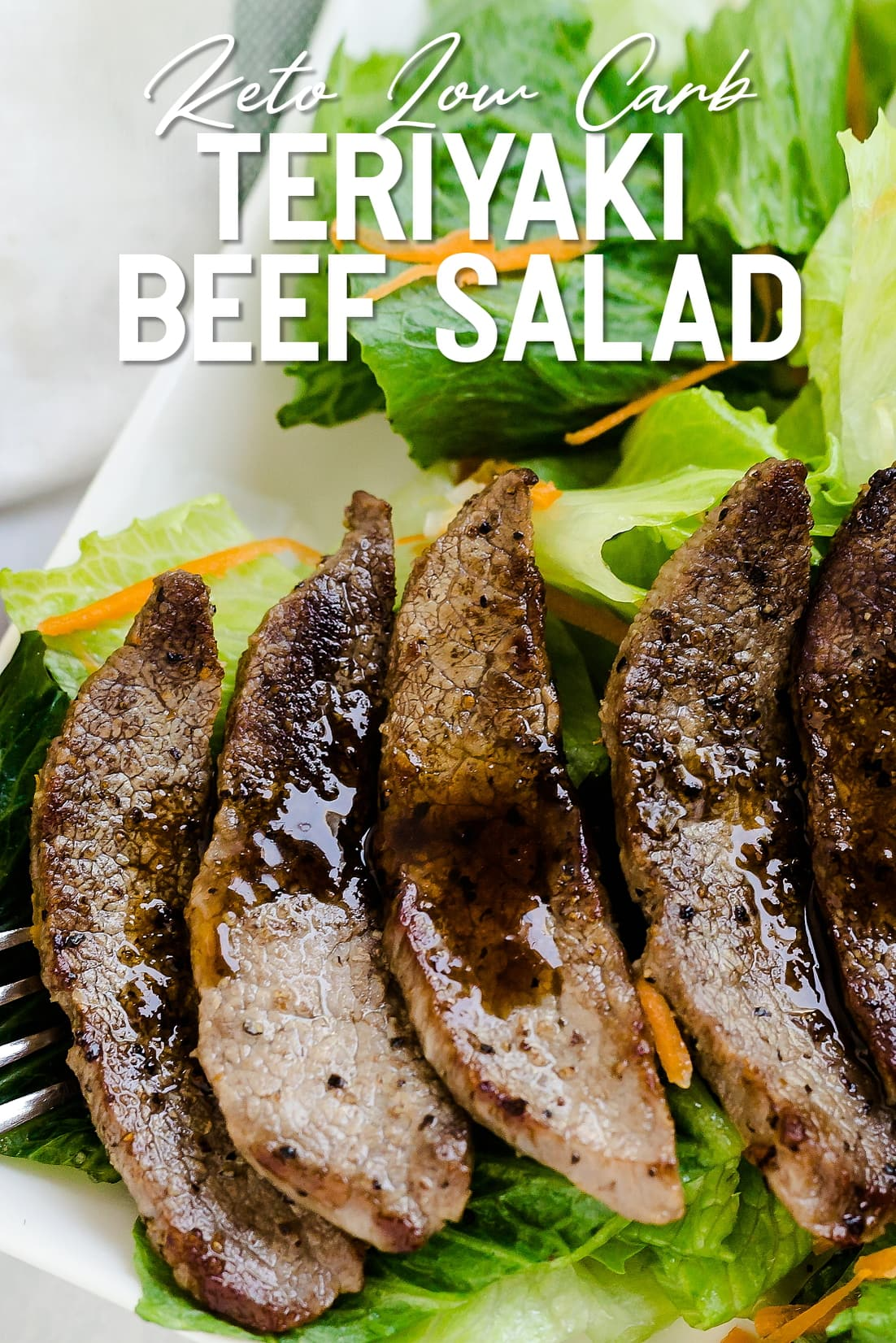 Teriyaki Beef Salad top down