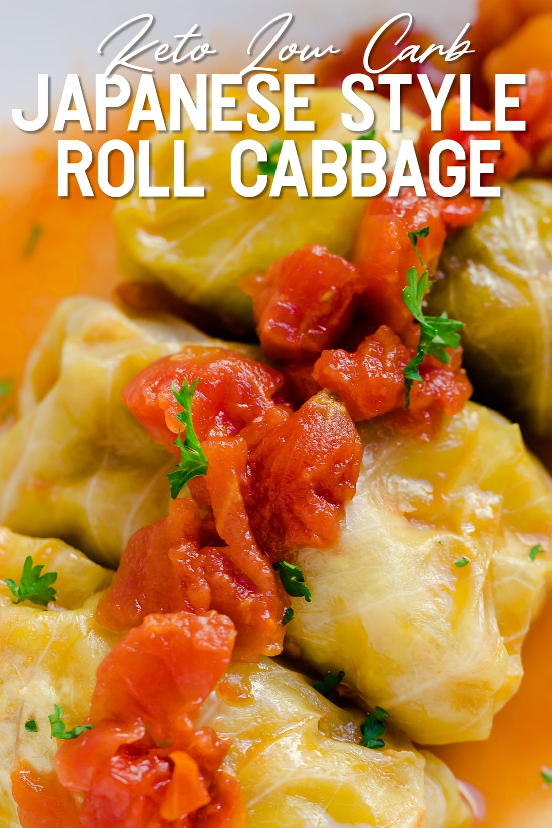Keto Japanese Style Roll Cabbage close up