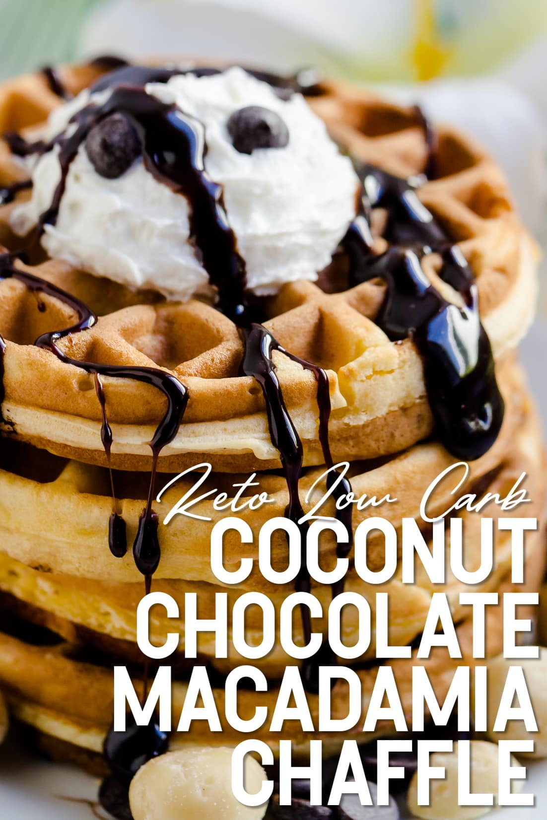 Coconut Chocolate Chip Macadamia Nut Chaffle served with whip cream and keto chocolate syrup